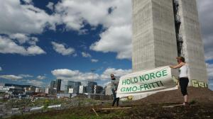 HOLD NORGE GMO FRITT