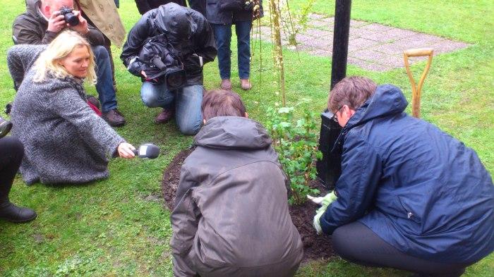 Fullt pressekorps tilstede når miljøvernministeren plantet bievennlige planter og busker i Oslo