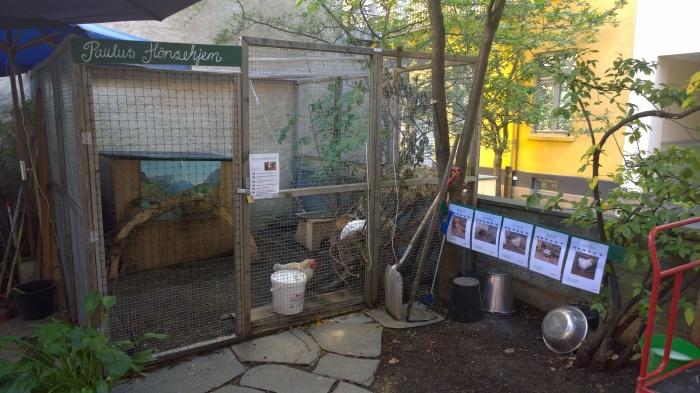 Hønsegården på Paulus Sykehjem